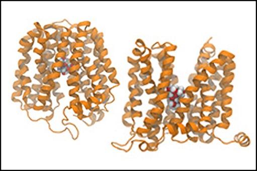 Laboratory of Molecular & Thermodynamic Modeling